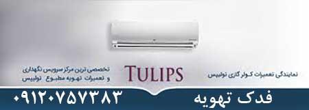 سرویس کولر گازی تولیپس